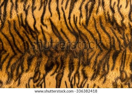 Beautiful tiger fur pattern texture background. - stock photo