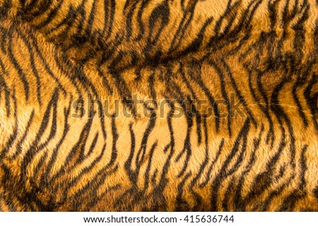 Beautiful tiger fur pattern texture background. - stock photo