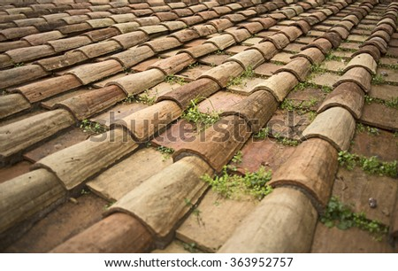 Beautiful tile on the roof of a Roman castle