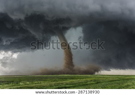 Beautiful tornado over a green field - stock photo