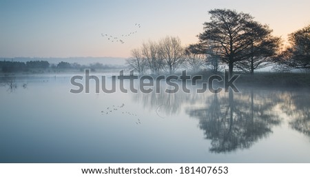 Beautiful tranquil landscape of lake in mist