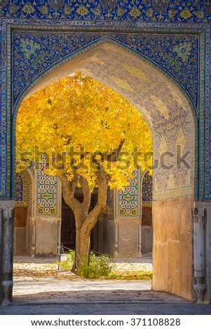 Beautiful tree with yellow leaves framed in arch of Shah Mosque in Esfahan, Iran - stock photo
