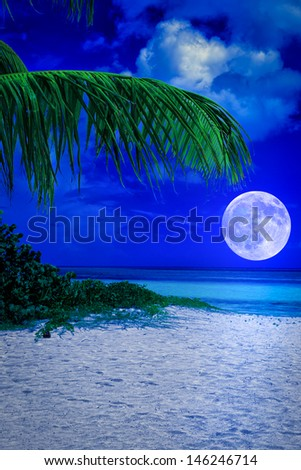 Beautiful tropical beach at night with a full moon creating reflections on the ocean - stock photo