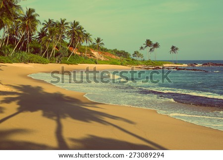beautiful tropical beach at sunset with palm shadows - vintage retro style - stock photo