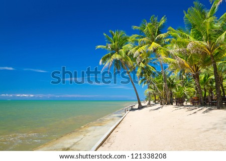 Beautiful tropical beach with coconut palm tree in Thailand