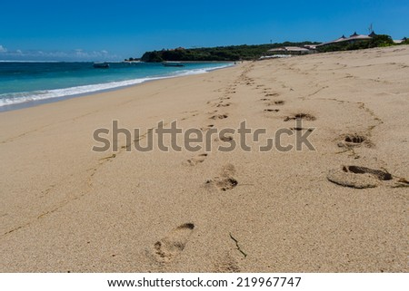 Beautiful tropical beach with lush vegetation fringing golden sand and a tranquil ocean with gentle surf breaking on the beach