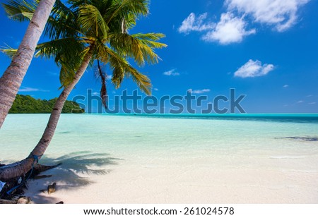 Beautiful tropical beach with palm trees, white sand, turquoise ocean water and blue sky at Palau - stock photo