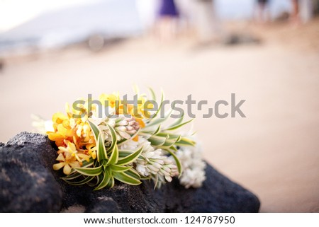 Beautiful tropical flowers - stock photo
