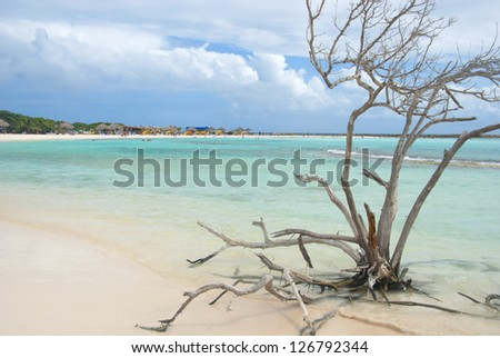 Beautiful tropical landscape - stock photo