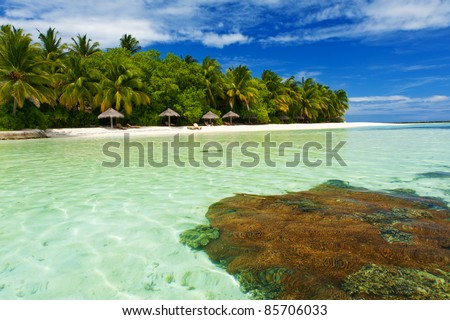 Beautiful tropical paradise in Maldives with coco palms hanging over the white and turquoise sea. Coral reef is visible from underwater.