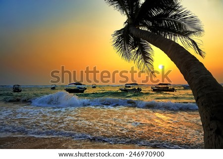 Beautiful tropical sunset with palm trees and boat  - stock photo