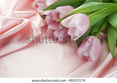 Beautiful Tulips and Silk.With copy space