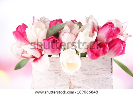 Beautiful tulips  in wooden box, on light background - stock photo