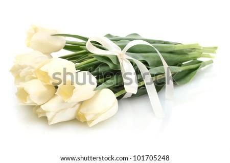 beautiful tulips isolated on white - stock photo