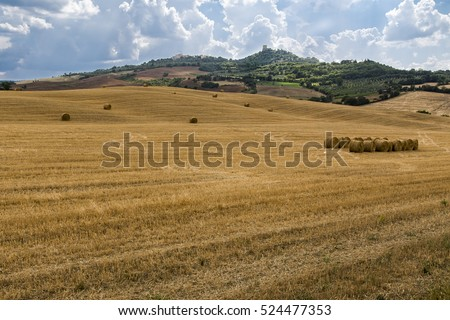 Beautiful Tuscan hills in summer with blue sky and white clouds.