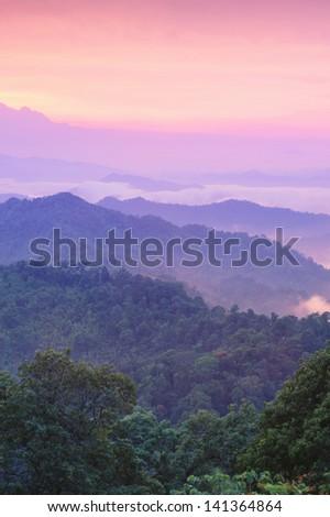 Beautiful twilight landscape in rain forest, Thailand. - stock photo