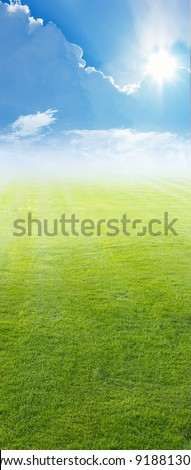 Beautiful vertical background - green field, blue sky, white clouds, bright sun - stock photo
