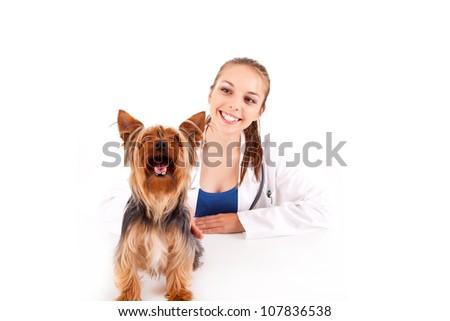Beautiful veterinarian with dog - stock photo