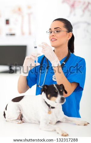 beautiful veterinary assistant preparing to inject pet dog - stock photo