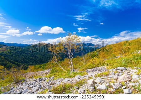 beautiful view  day in autumn landscape mountain background