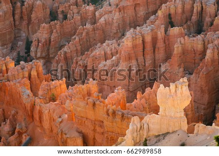 Beautiful view in Bryce canyon. Morning light illuminated the sandstone hoodoos, Utah.