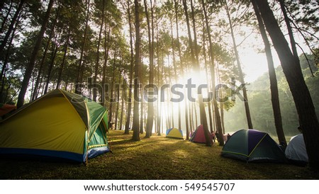beautiful view in camp morning