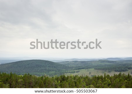 Beautiful view of a forest landscape