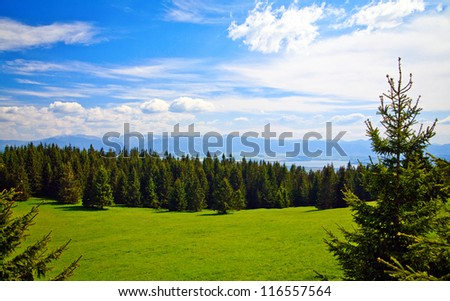 beautiful view of a meadow and mountains near Liptovsky Mara in Slovakia - stock photo