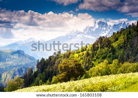 Beautiful view of alpine meadows at the foot of  Mt. Ushba. Upper Svaneti, Georgia, Europe. Caucasus mountains. Beauty world. - stock photo