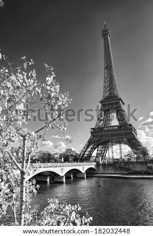 Beautiful view of Eiffel Tower from Trocadero area - Paris. - stock photo