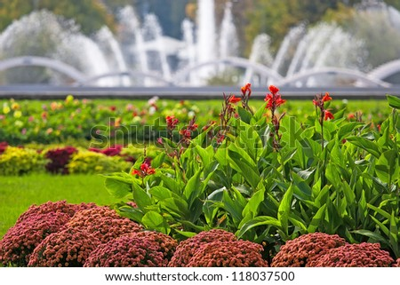 Beautiful view of flowers and fountain as background in the park, Moscow, Russia