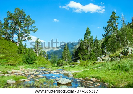 Beautiful view of mountain river in summer.