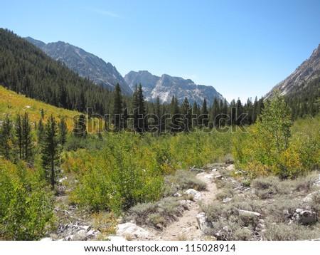 Beautiful view of Sierra mountain meadow, California - stock photo