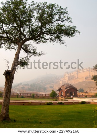 beautiful view of the Amber fort in Jaipur, India - stock photo