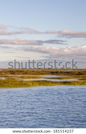 Beautiful view of the famous natural Ria Formosa marshlands located in Faro, Portugal.