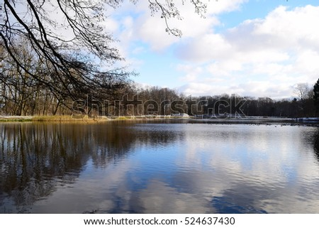 Beautiful view of the lake of the woods in winter