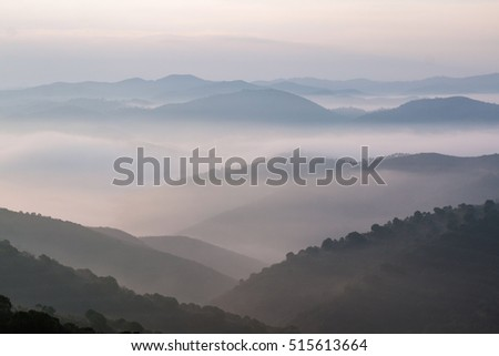 Beautiful view of the morning fog filling the valleys of smooth hills.