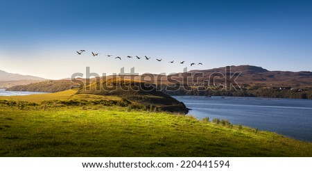Beautiful view of the mountain lake with flying birds in Scotland - stock photo