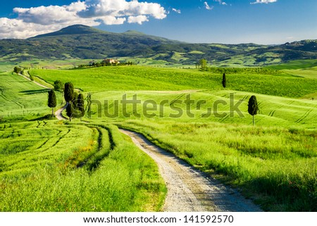 Beautiful view of the path between the fields in Tuscany - stock photo