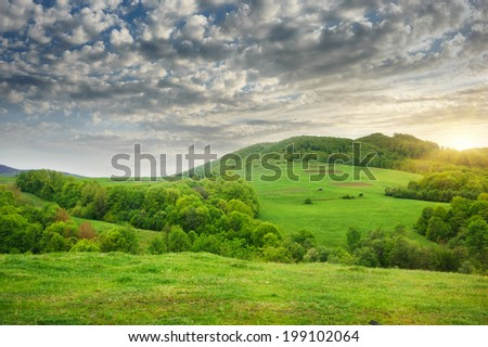 Beautiful view on mountains and meadows covered with forest