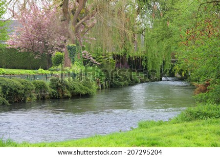 Beautiful view on river in village with blooming gardens