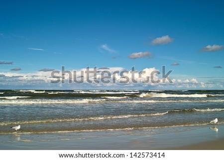 Beautiful view on the Polish Baltic coast. - stock photo