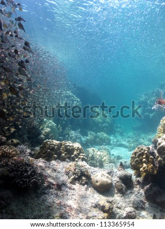 Beautiful view throw the lagoon in shallow water - stock photo