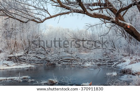 beautiful view. winter river with frost covered tree along the shore, obstruction of old trees in the water. Gray misty morning.  frozen lake and trees in snow - stock photo