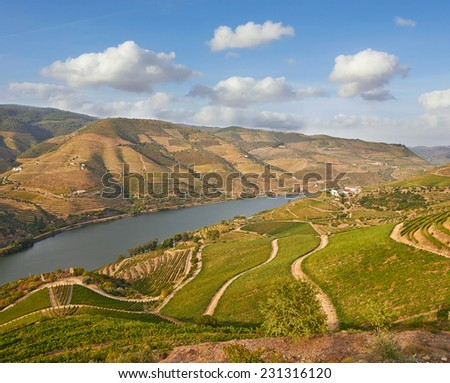 Beautiful Vineyards in Douro Valley, Portugal - stock photo