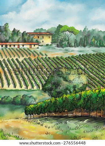 Beautiful vineyards landscape. Digital watercolor. - stock photo