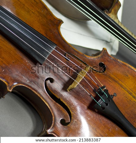 beautiful violin on a background of the old notes. musical instruments. stringed instruments