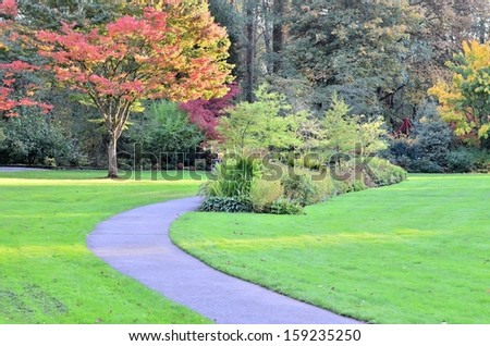 Beautiful walking path in the forest - stock photo