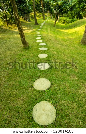 Beautiful walking track in a nature park amid lush green trees