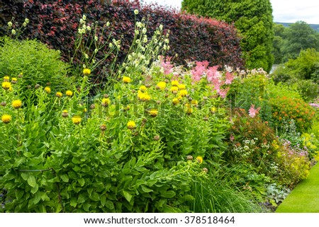 Beautiful walled garden with variety of blooming flowers - stock photo